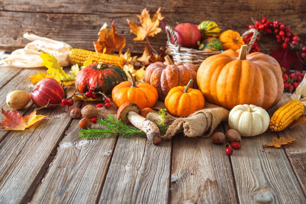 Escoge alimentos apropiados para el otoño