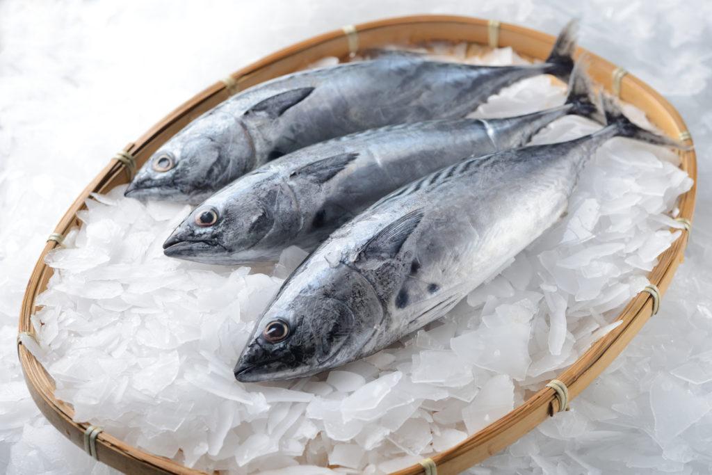 Mercurio en el pescado: ¿qué precauciones debemos tomar?
